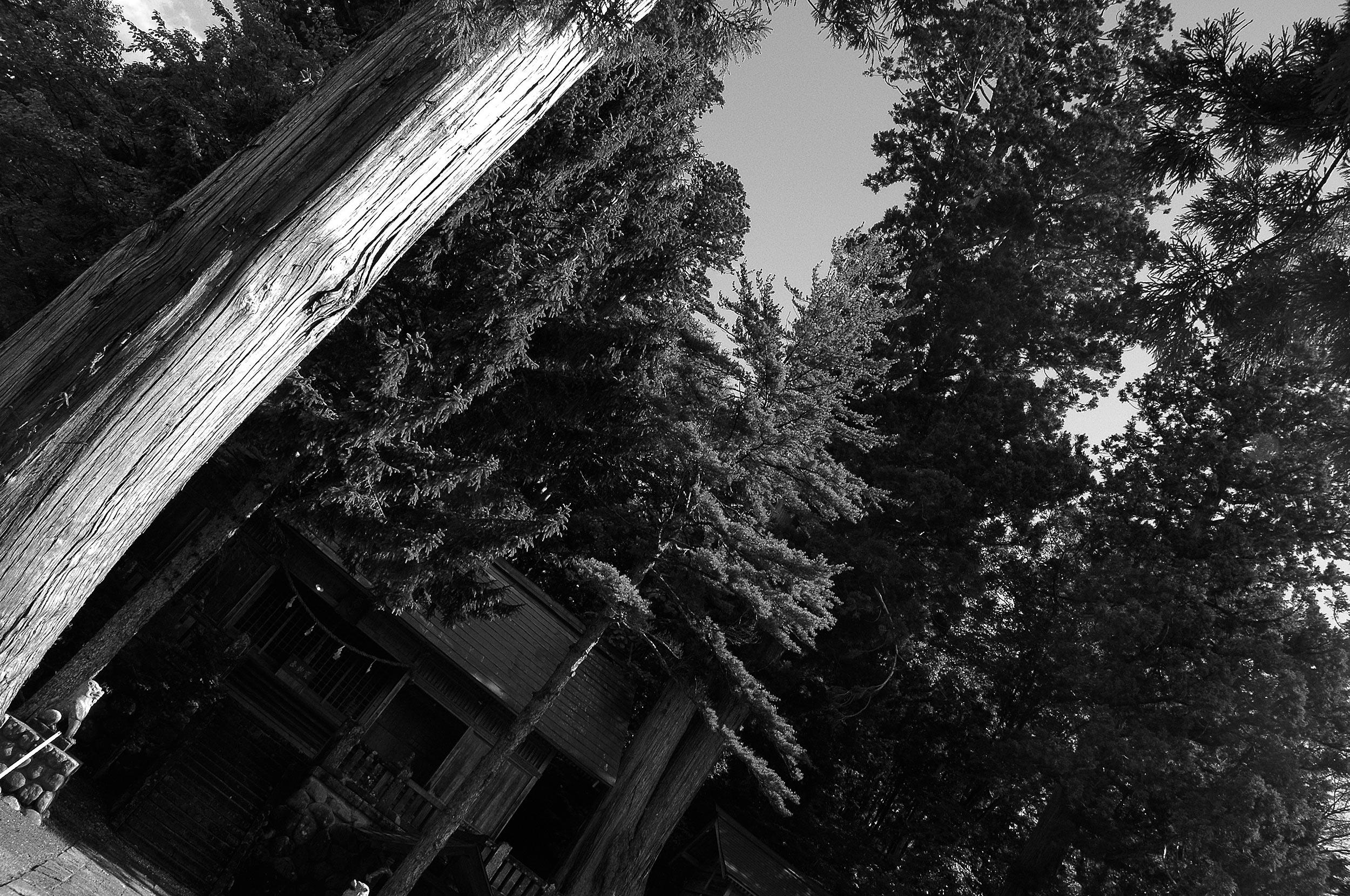 切久保諏訪神社(夏)